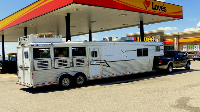 Horse Trailer Accidents and Injury Liability in Kentucky